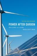 Power After Carbon : Building a Clean, Resilient Grid