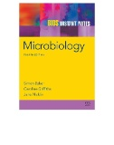 Microbiology Image