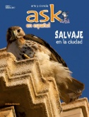 Ask en Español Magazine Subscriptions