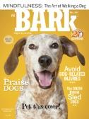 The Bark Magazine Subscriptions