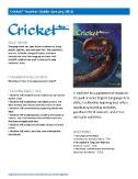 Cricket Teacher's Guide Magazine Subscriptions
