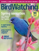 Bird Watching Magazine Subscriptions
