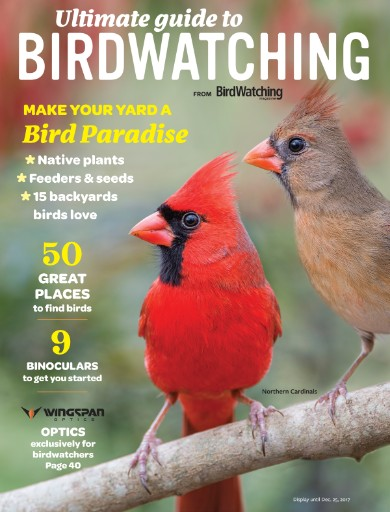 Ultimate Guide to Birdwatching Magazine Subscriptions