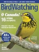 Bird Watching Magazine Subscriptions