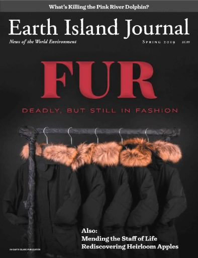 Earth Island Journal Magazine Subscriptions