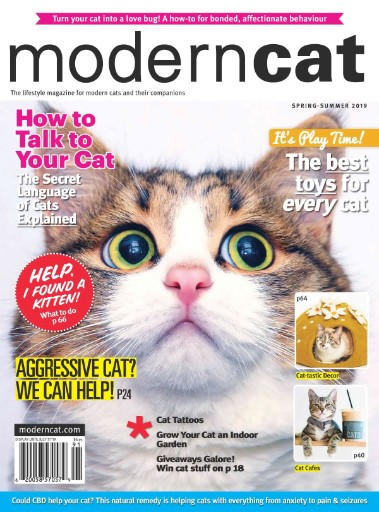 Modern Cat Magazine Subscriptions