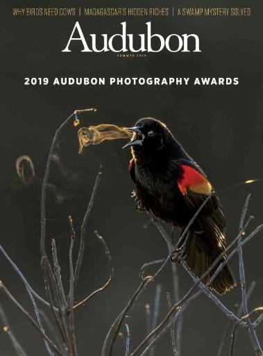 Audubon Magazine Subscriptions