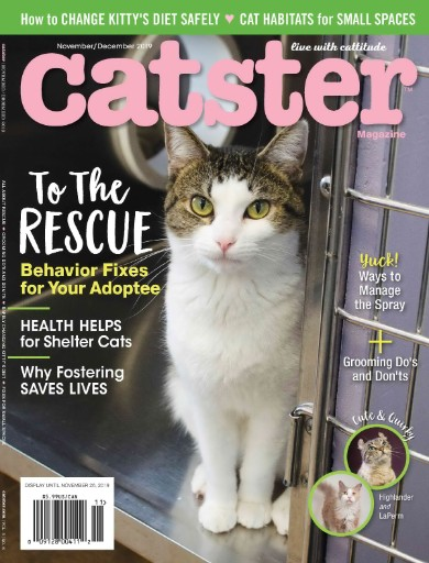 Catster Magazine Subscriptions
