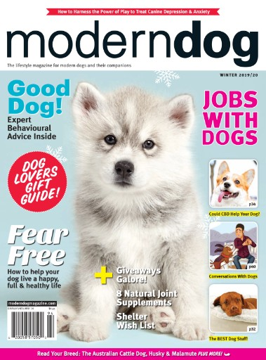 Modern Dog Magazine Subscriptions