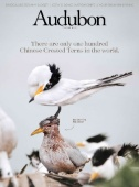 Audubon Magazine Subscriptions