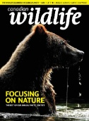 Canadian Wildlife Magazine Subscriptions