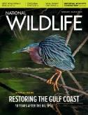 National Wildlife (World Edition) Magazine Subscriptions