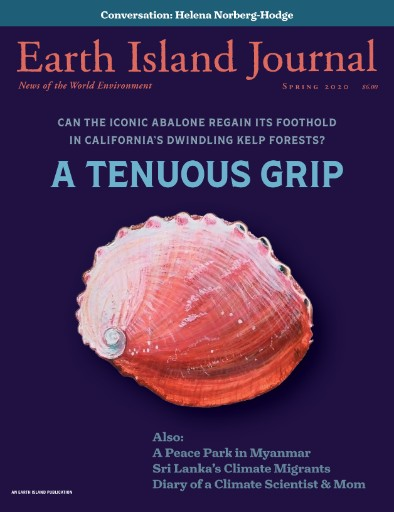Earth Island Journal Magazine Subscriptions