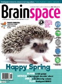 Brainspace Magazine Subscriptions