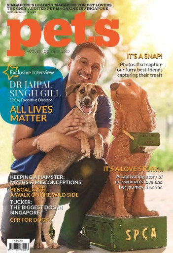 Pets Magazine Magazine Subscriptions