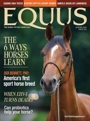Equus Magazine Subscriptions