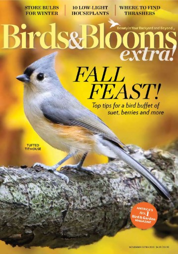 Birds & Blooms Extra Magazine Subscriptions