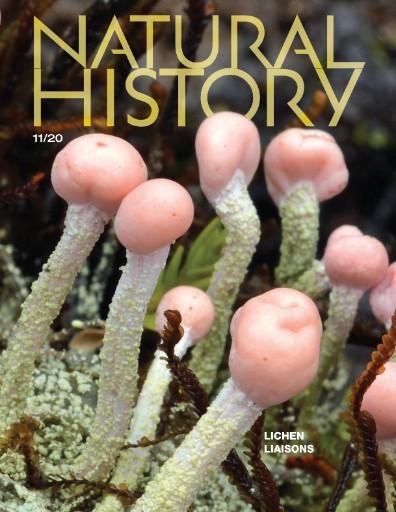 Natural History Magazine Subscriptions