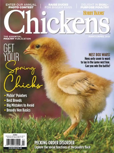 Chickens Magazine Subscriptions