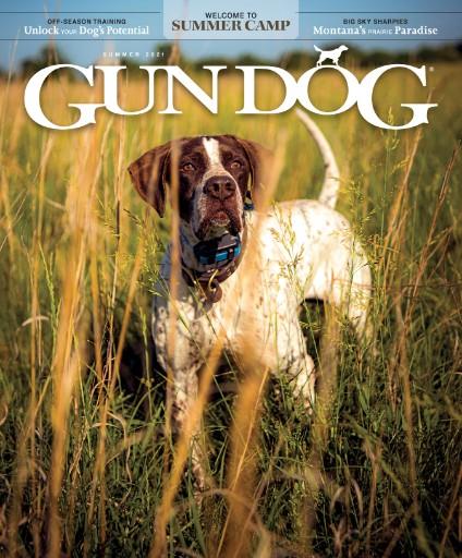 Gun Dog Magazine Subscriptions