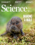 Science Magazine Subscriptions