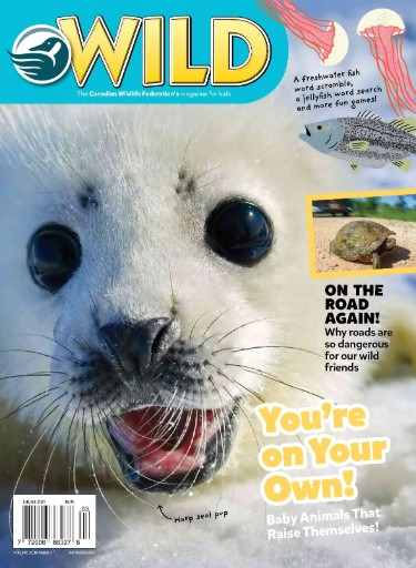 WILD Magazine Subscriptions