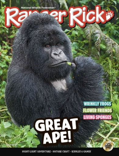 Ranger Rick Magazine Subscriptions