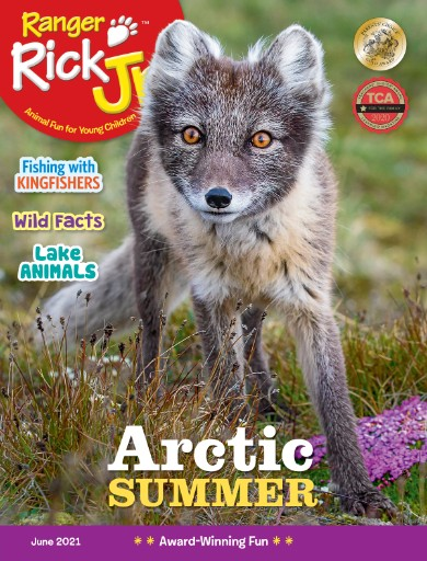 Ranger Rick Jr. Magazine Subscriptions