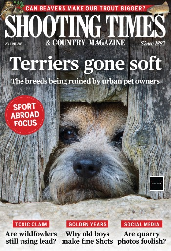Shooting Times & Country Magazine Magazine Subscriptions