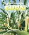 Corn : Chemistry and Technology