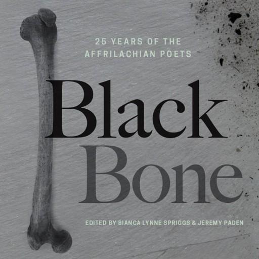 Black Bone : 25 Years of the Affrilachian Poets