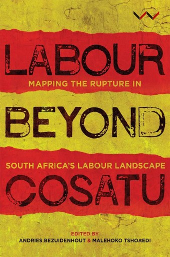 Labour Beyond Cosatu : Mapping the Rupture in South Africa's Labour Landscape