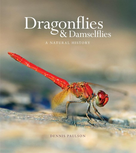 Dragonflies and Damselflies : A Natural History