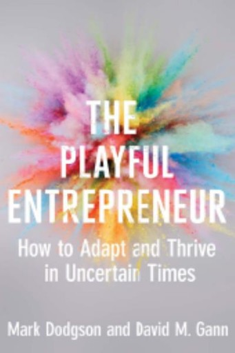 The Playful Entrepreneur : How to Adapt and Thrive in Uncertain Times