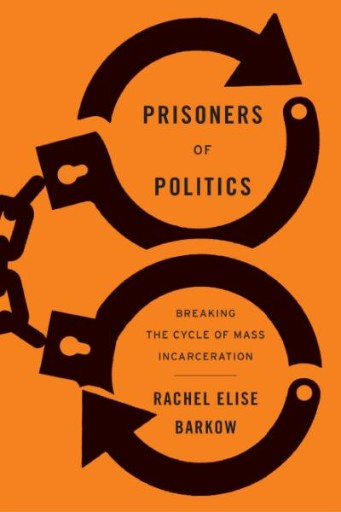 Prisoners of Politics : Breaking the Cycle of Mass Incarceration