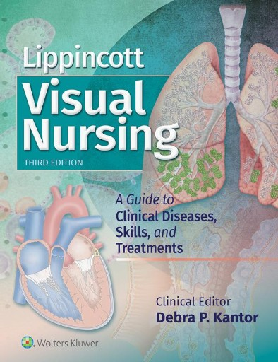 Lippincott Visual Nursing : A Guide to Clinical Diseases, Skills, and Treatments