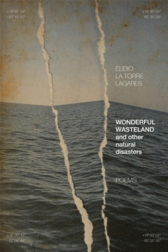 Wonderful Wasteland and Other Natural Disasters : Poems