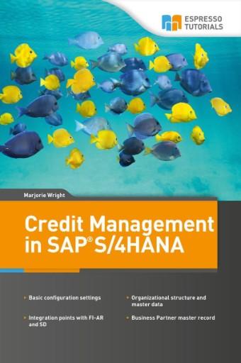 Credit Management in SAP S/4HANA