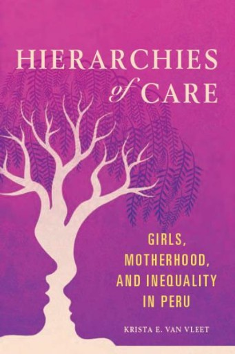 Hierarchies of Care : Girls, Motherhood, and Inequality in Peru