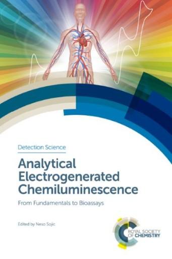 Analytical Electrogenerated Chemiluminescence : From Fundamentals to Bioassays
