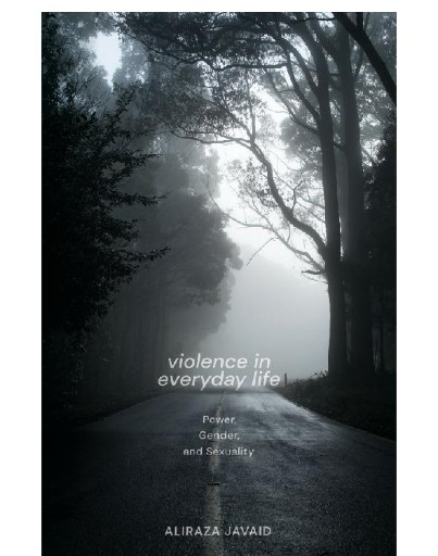 Violence in Everyday Life : Power, Gender and Sexuality