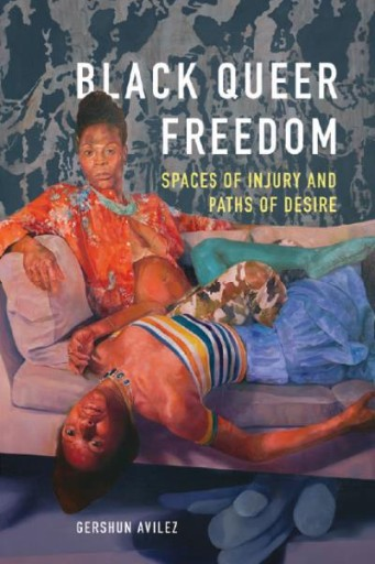 Black Queer Freedom : Spaces of Injury and Paths of Desire