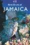 Jamaica Kincaid : A Critical Companion